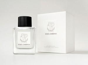 """""""Dolce & Gabbana"""" së shpejti me parfum për fëmijë!"""