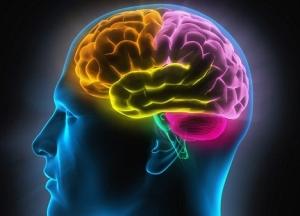 11 këshilla për personat me memorie të dobët
