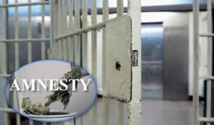 Hiqet neni 3 për Amnistinë dhe ligji riprocedohet për Kuvend