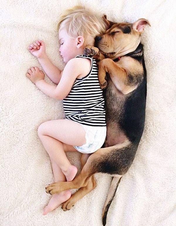 Djaloshi që nuk mund të fle pa qenin e tij!