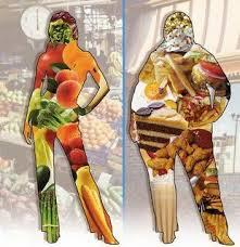 Dieta paleolitike